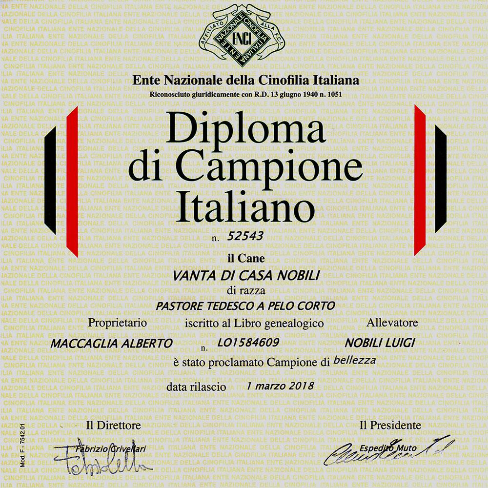 Campione Italiano di Bellezza ENCI