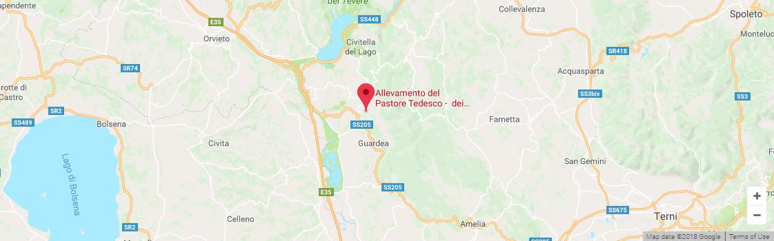 Allevamento Pastori Tedeschi tra Umbria e Lazio